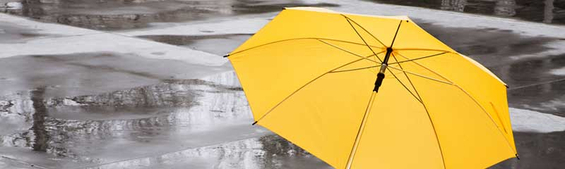 An Umbrella for Auto and Home Liability