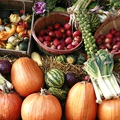 Pumpkin, Spice, and Everything Nice: 10 Fall Harvest Dishes You Can't Miss