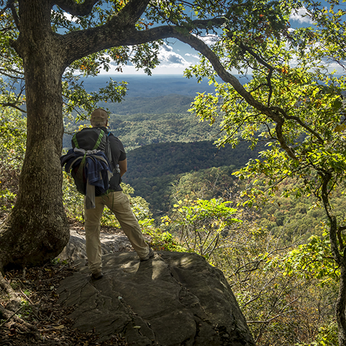 Top 10 Spots in New Jersey for Hiking